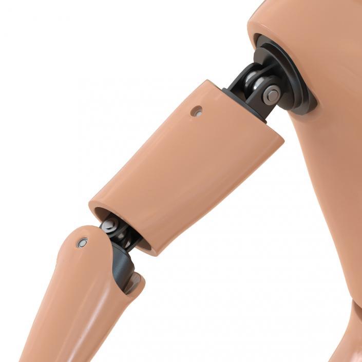 3D Male Crash Test Dummy Rigged model