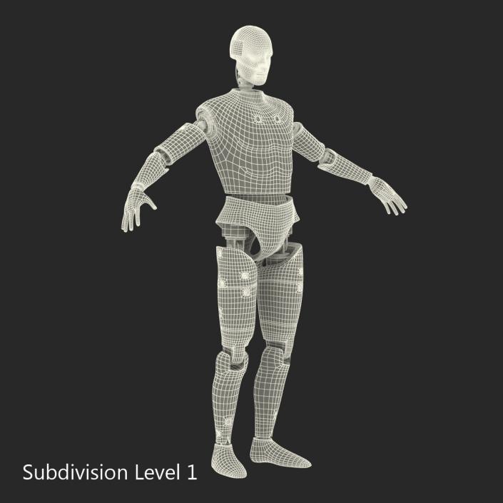 3D Male Crash Test Dummy