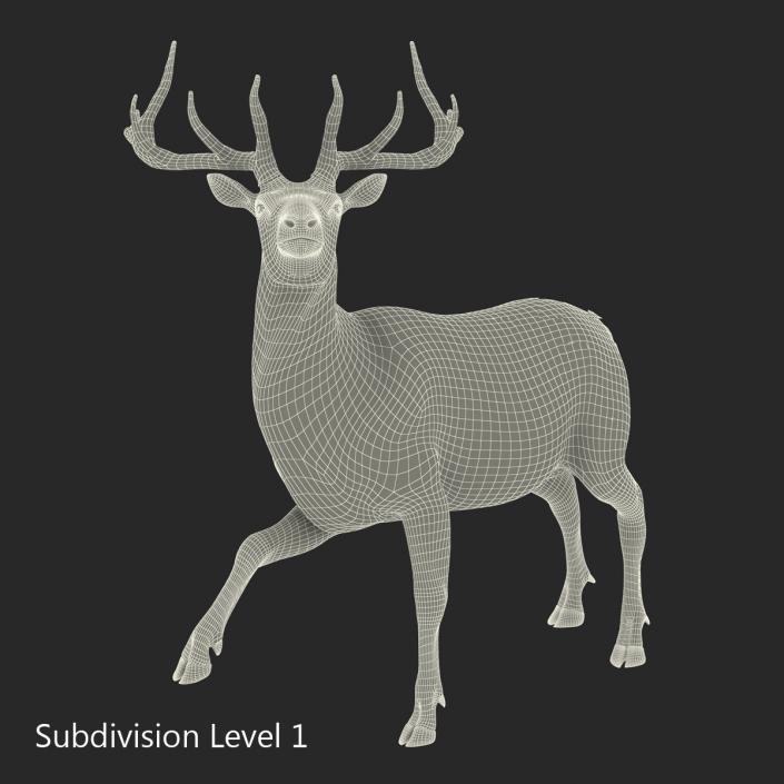 3D model Elk Rigged