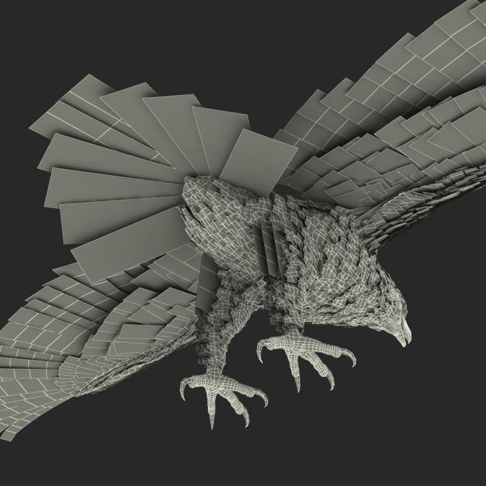 Golden Eagle Rigged 3D model