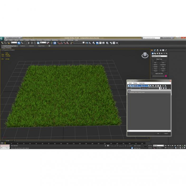 Centipede Warm Season Grass 3D