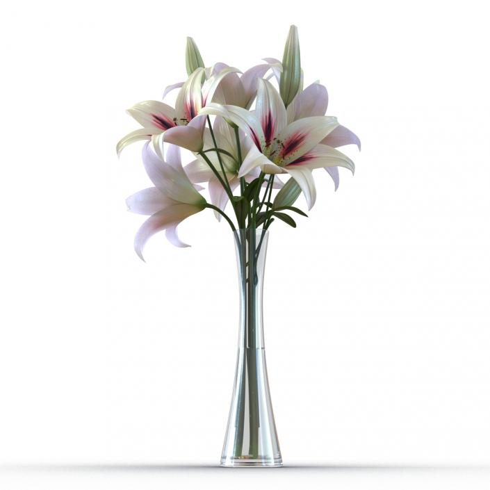 3d Model White Lily Vase 3d Molier International