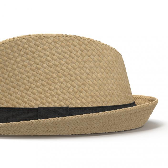 Mens Straw Hat 3D model