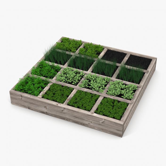 3D Vegetable Garden