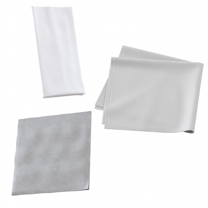 3D Napkins Collection model