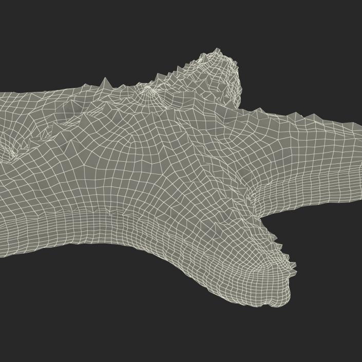3D model Starfish