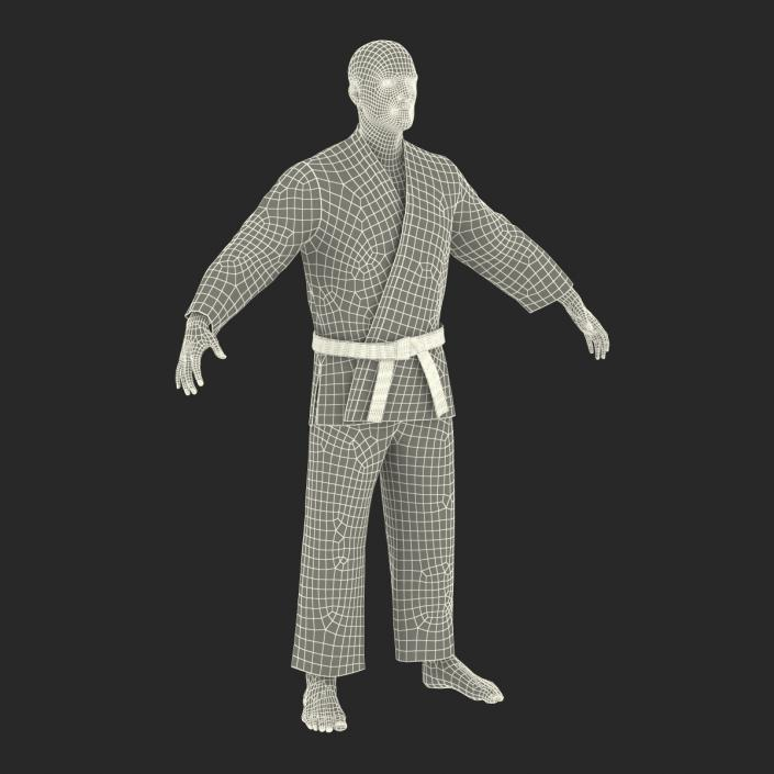 3D Karate Fighter Rigged