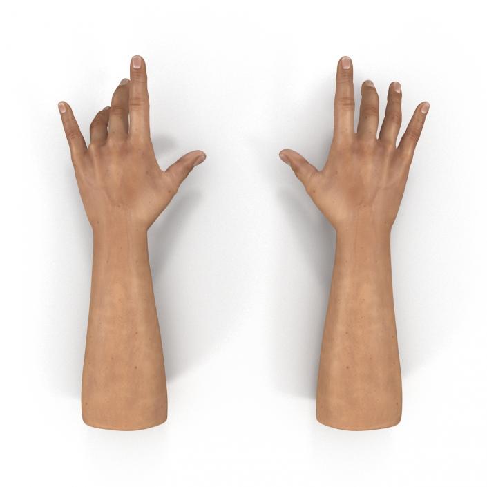 3D Man Hands Rigged