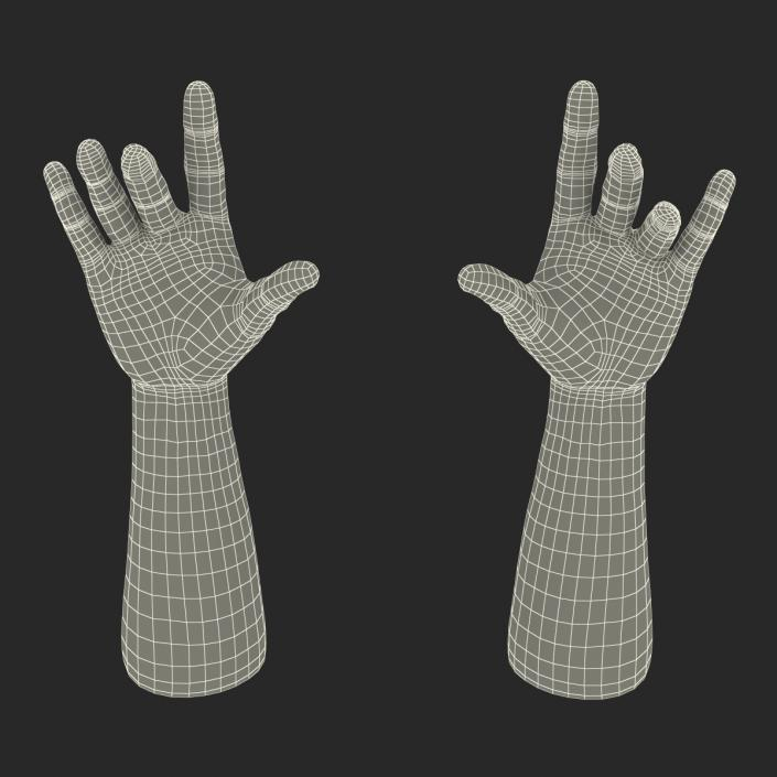 3D Man Hands Rigged