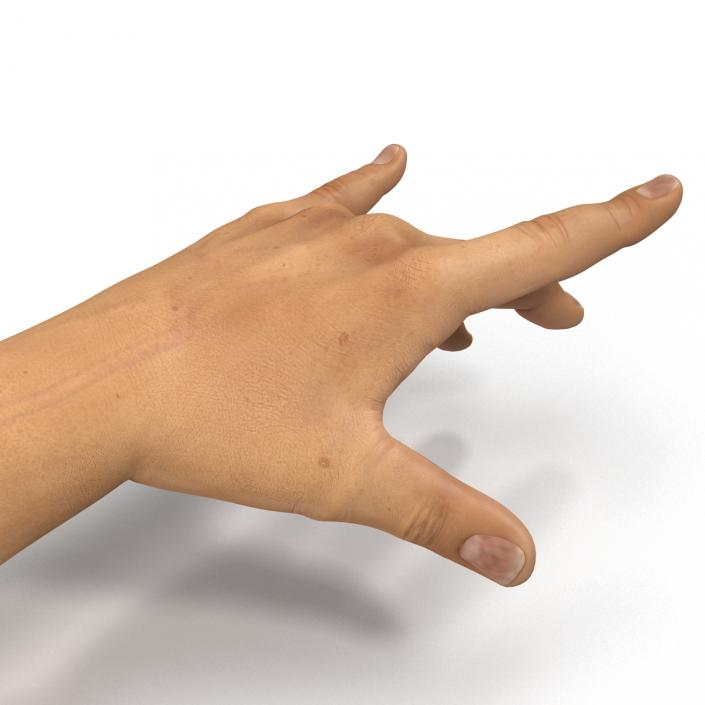 3D Man Hands 2 Rigged model