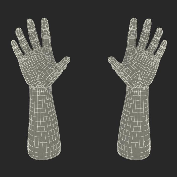 3D Man Hands 2 Rigged model
