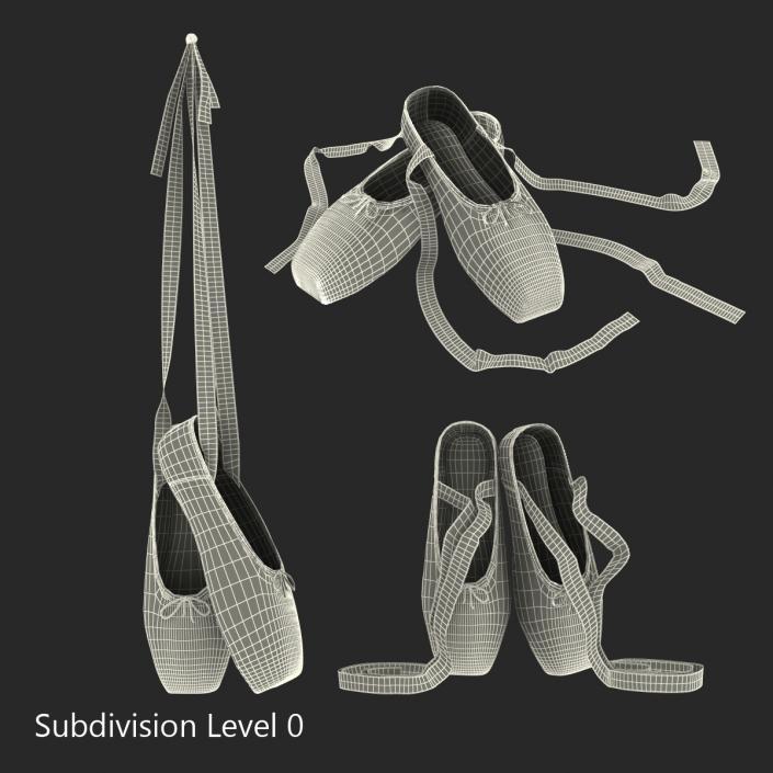3D Ballet Shoes Set