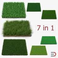 Grass Fields Collection