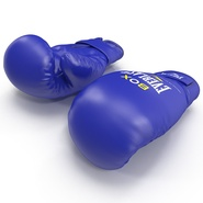 Boxing Gloves Everlast Blue. Preview 8