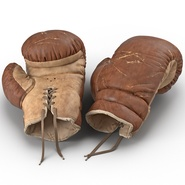 Old Leather Boxing Glove(1). Preview 1