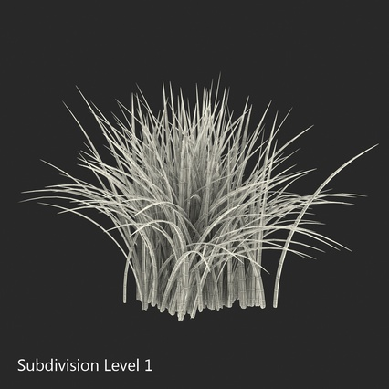 Grass Collection. Render 21