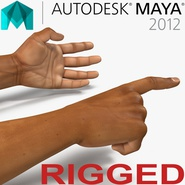 African Man Hands 2 Rigged for Maya