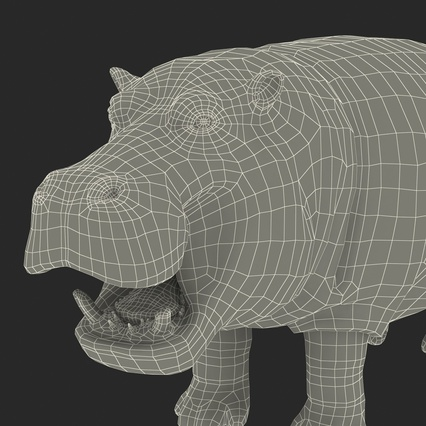 Hippopotamus Rigged for Cinema 4D. Render 38