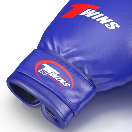 Boxing Gloves Twins Blue. Render 22