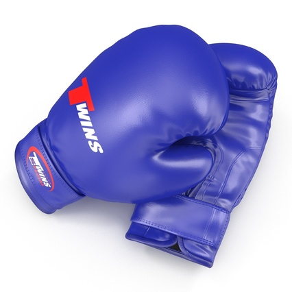 Boxing Gloves Twins Blue. Render 16