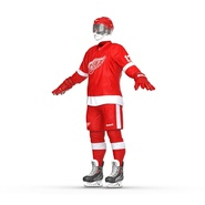 Hockey Equipment Detroit Red Wings. Preview 11
