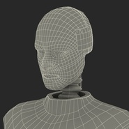Male Crash Test Dummy Rigged for Cinema 4D. Preview 53