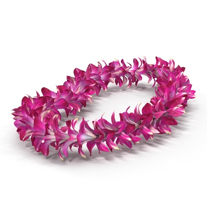 Hawaiian Leis Collection. Render 15