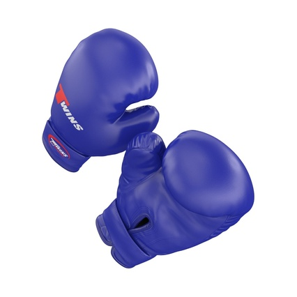 Boxing Gloves Twins Blue. Render 11