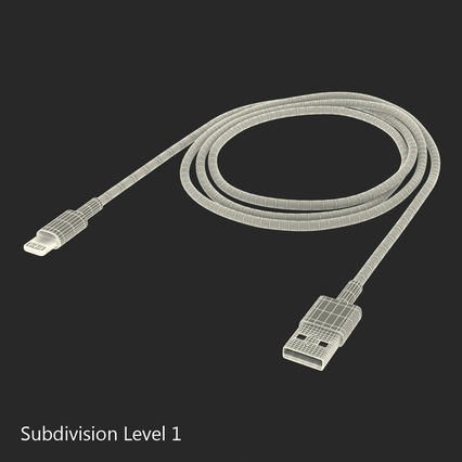 Apple Lightning to USB Cable. Render 18