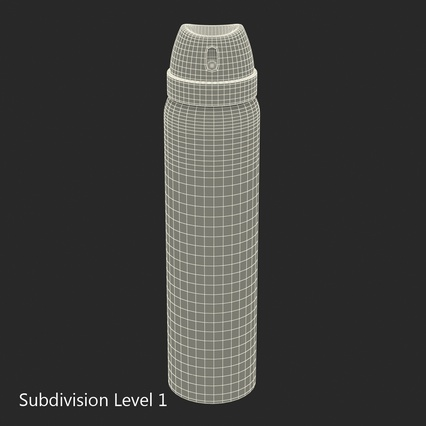 Metal Bottle With Sprayer Cap Generic. Render 16