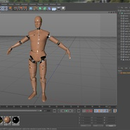 Male Crash Test Dummy Rigged for Cinema 4D. Preview 38