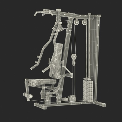 Weight Machine 2. Render 4