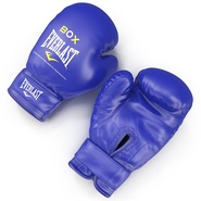 Boxing Gloves Everlast Blue. Preview 5