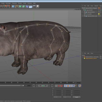 Hippopotamus Rigged for Cinema 4D. Render 24