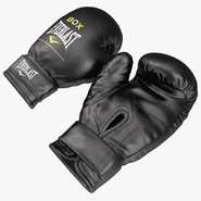 Boxing Gloves Everlast Black