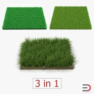 Grass Fields Collection 2. Preview 1