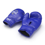 Boxing Gloves Everlast Blue. Preview 3