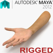 Female Hand Rigged for Maya