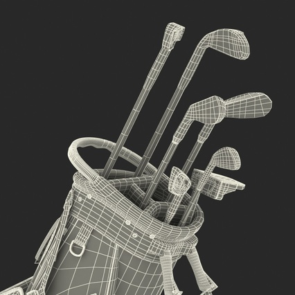 Golf Bag Seahawks with Clubs. Render 29