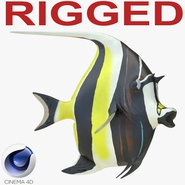 Moorish Idol Fish Rigged for Cinema 4D