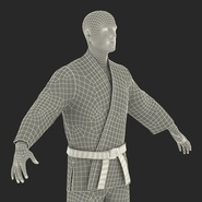 Karate Fighter Rigged for Cinema 4D. Preview 54