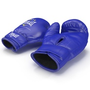 Boxing Gloves Everlast Blue. Preview 6