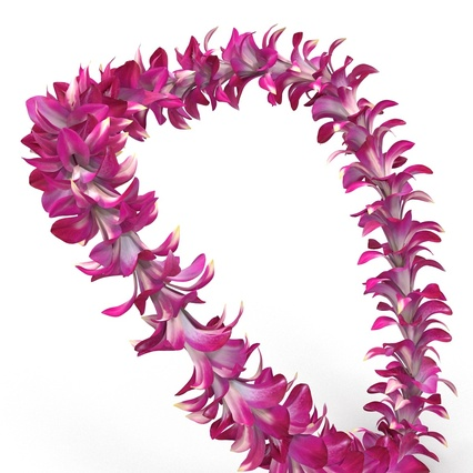 Hawaiian Leis Collection. Render 13
