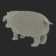 Hippopotamus Rigged for Cinema 4D. Preview 31
