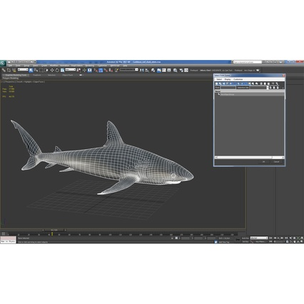 Caribbean Reef Shark. Render 39
