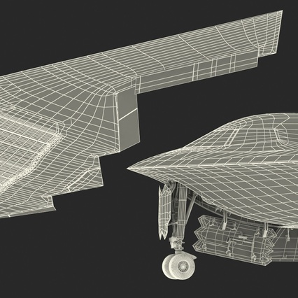 Stealth Bomber B-2 Spirit Rigged. Render 31