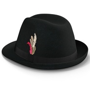 Fedora Hat 2. Preview 21