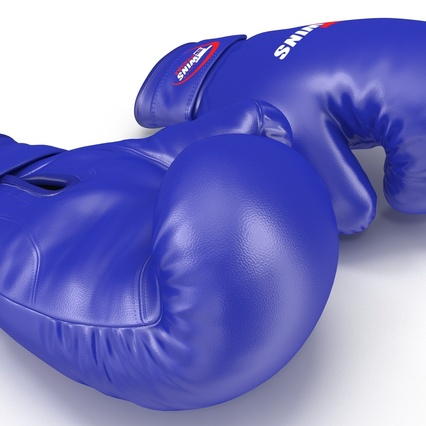 Boxing Gloves Twins Blue. Render 23