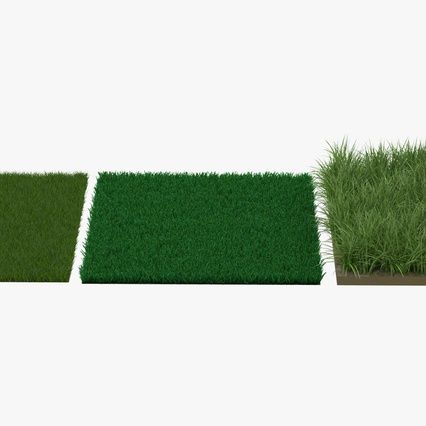 Grass Fields Collection 2. Render 6
