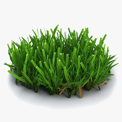 Grass Collection. Render 7